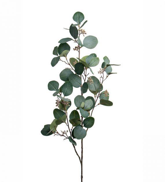 Mr Plant Eucalyptus kvist 100cm